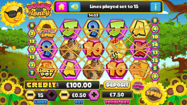 Screenshot of the Winlines in Main Reels in Double Your Honey mobile slots by mFortune